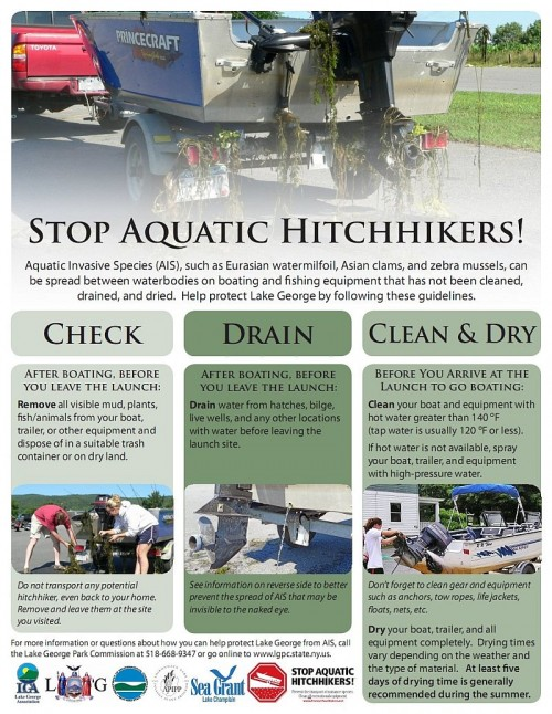 Invasive Species Flyer for Boaters