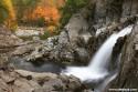 Adirondack Foliage - www.adkbook.com