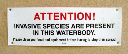 Attention - Invasive Species