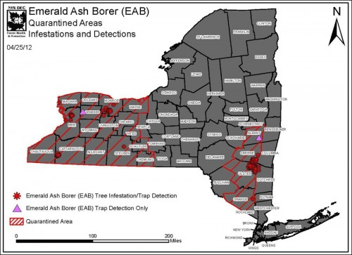 Emerald Ash Borer - Quarantined Areas - Infestations and Detections