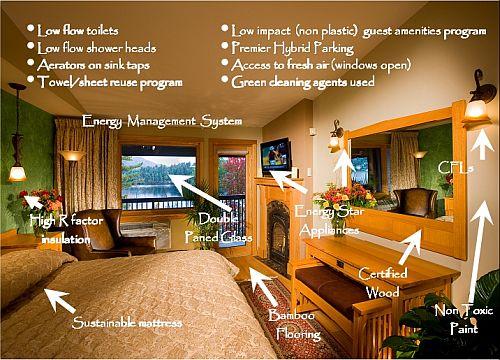 Green Hotel Room