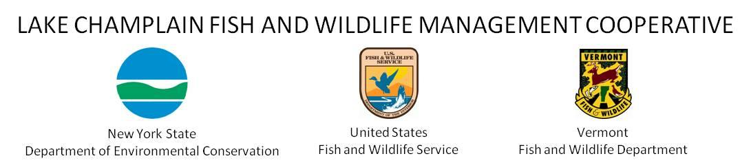 New york for Fish and wildlife permit