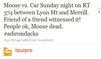Moose vs. Car Tweet