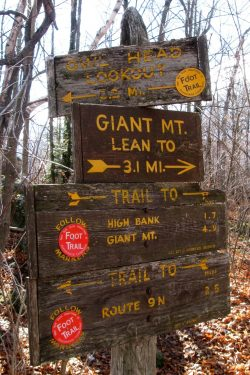 Owls Head Trail Signage