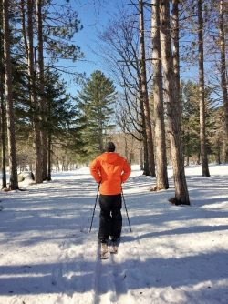 Peninsula Nature Trails - Skier