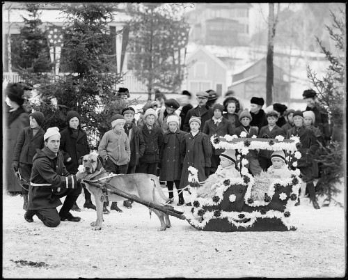 Midwinter carnival, children's parade, dog sleds, Upper Saranac Lake, N.Y.