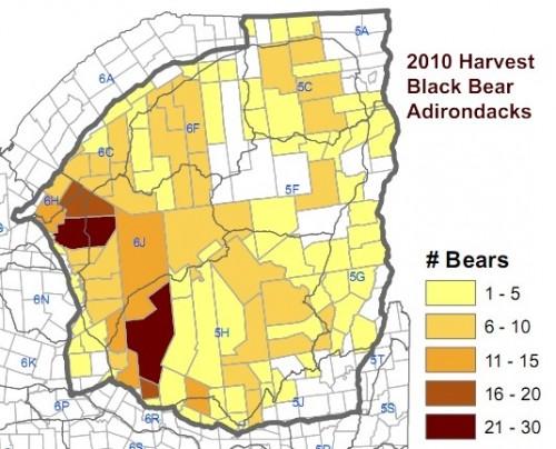 2010 Adirondack Bear Harvest