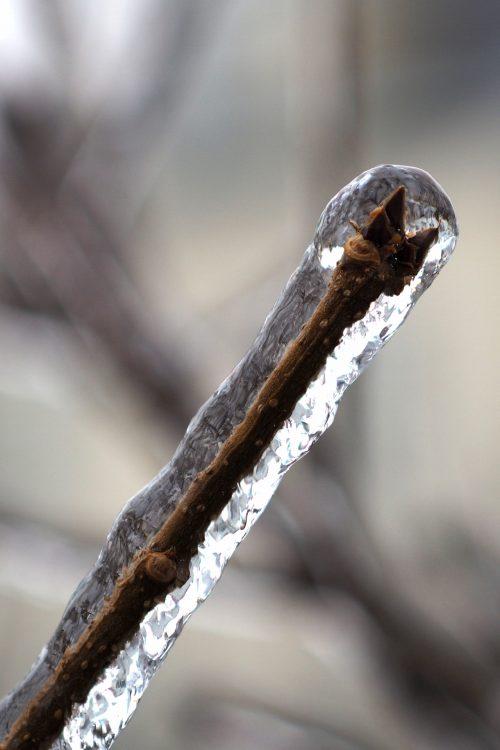 Ice accretion