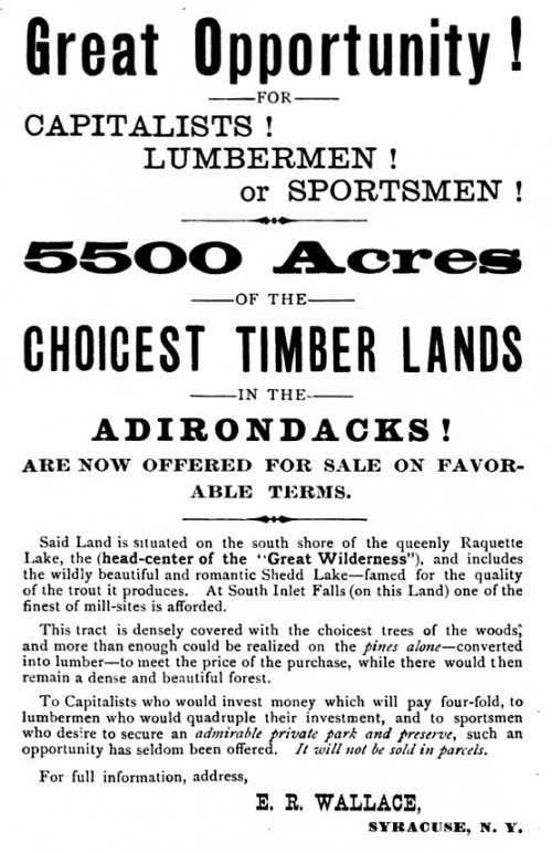 Great Opportunity ! - Choice Timber Lands in the Adirondacks