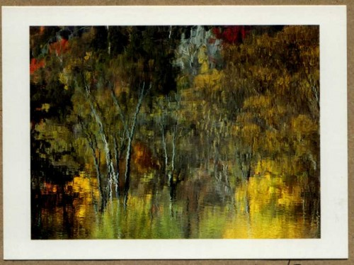 """Ausable Impressions"" by Jeri Wright of Wilmington, New York"