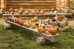 Fall Festival at the Adirondack Museum