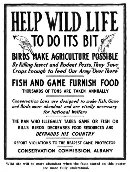 Help Wild Life