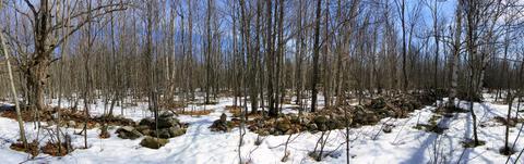 Wall - Herb Trail